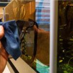 3 способа как чистить стекла аквариума